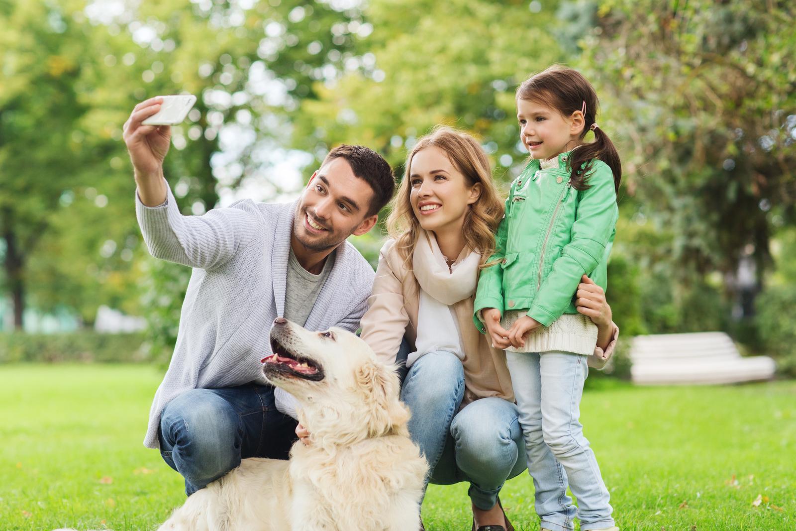 Free Online Vet Advice For Dogs